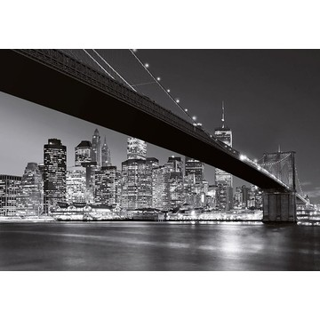 Brooklyn Bridge NY 00140