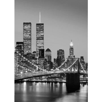 00388_manhattan_skyline_at_night_print