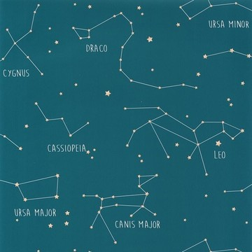 Constellations OUP 10191 60 03