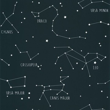 Constellations OUP 10191 69 18