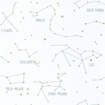 Constellations OUP 10191 71 25