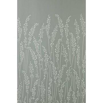 Feather Grass 5102