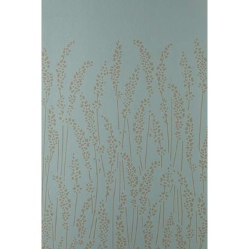Feather Grass 5107