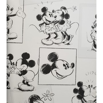 Mickey & Minnie Sketch 102712