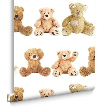 Teddy Bears 102710