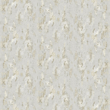 Antique painted wall - Gray 8888-75B