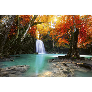 Deep Forest Waterfall MS-5-0083