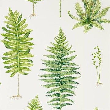 Fernery Botanical Green 216633