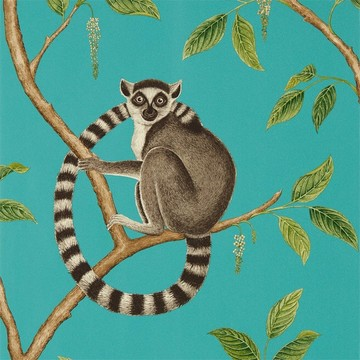 Ringtailed Lemur Teal 216663