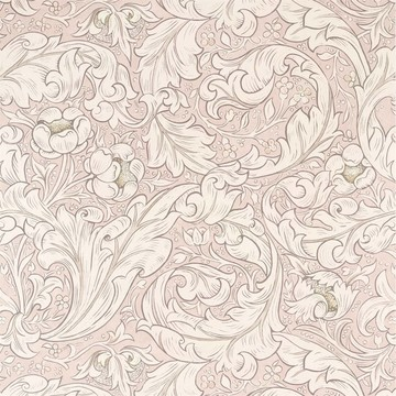 Pure Bachelors Button Faded Sea Pink 216553