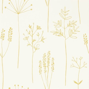Stipa Honey 112021