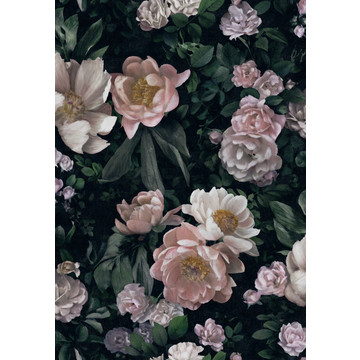 In_Bloom_7234_New_Dawn_Rose_53x76cm_halfdrop