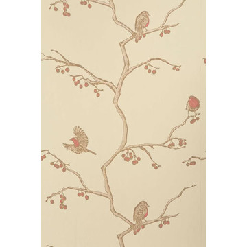 The English Robin Parchment BG0300102