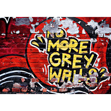 No More Grey Walls 00126