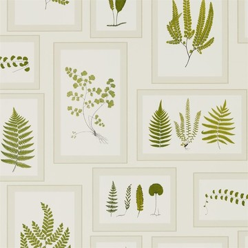 Fern Gallery  Ivory/Green 215712